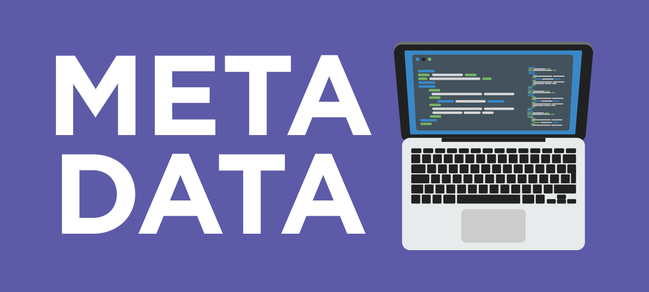 A Beginner's Guide to Metadata